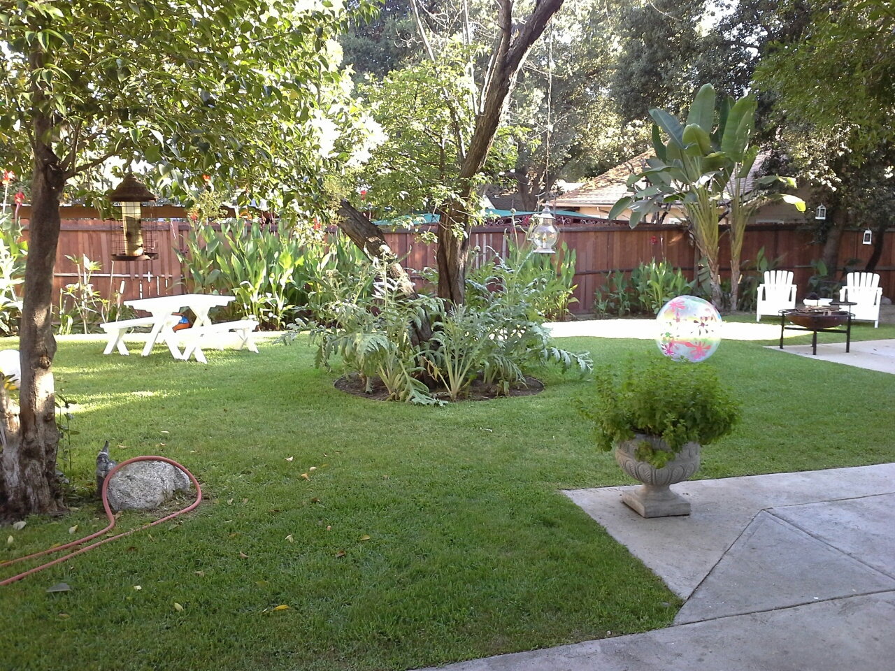 Back Yard of the Ernest Wood House